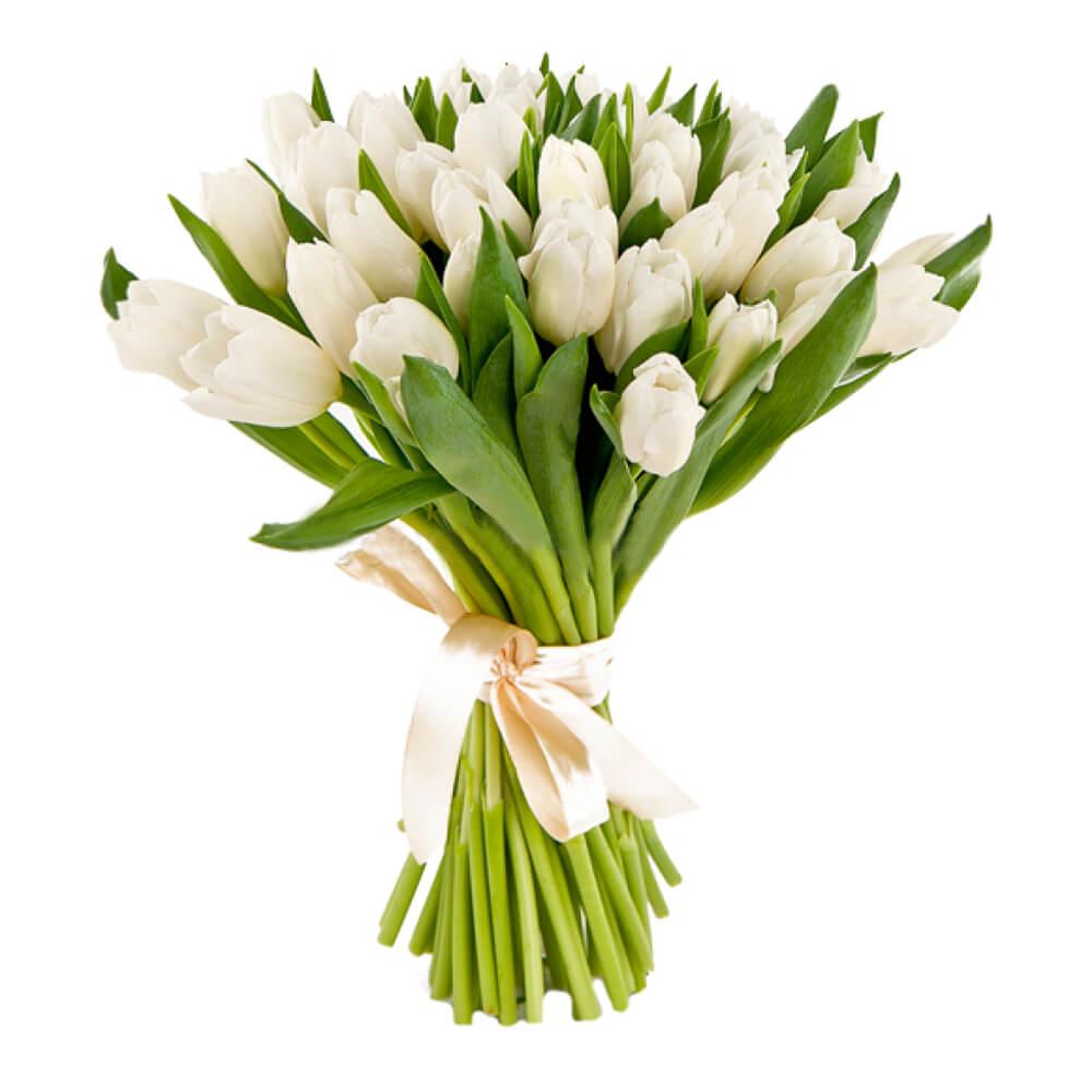 Букет из 25 тюльпанов купить украина